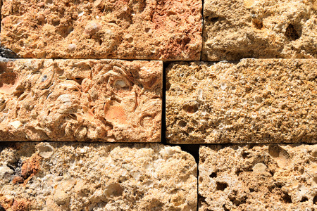 coquina: texture wall built of of coquina blocks
