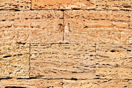 coquina: rough coquina masonry bricks background