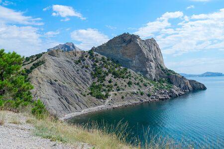 rocky mountain juniper: Blue Bay in the New World Crimea