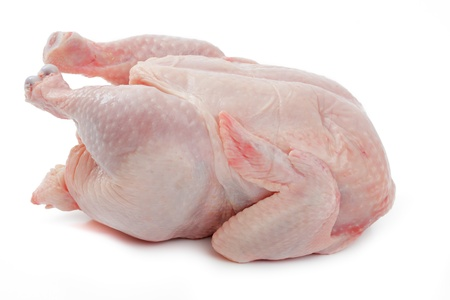 Crude Hen on a white background Stock Photo - 9495232