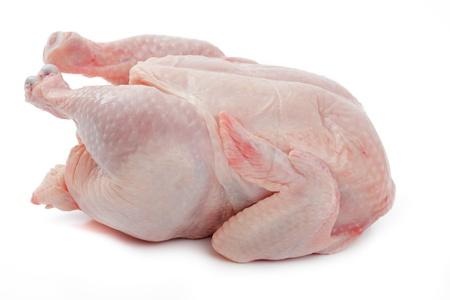 Crude Hen on a white background
