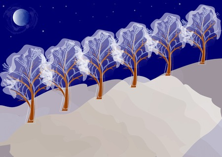 winter night landscape with the moon, stars and snow-covered trees  Illustration