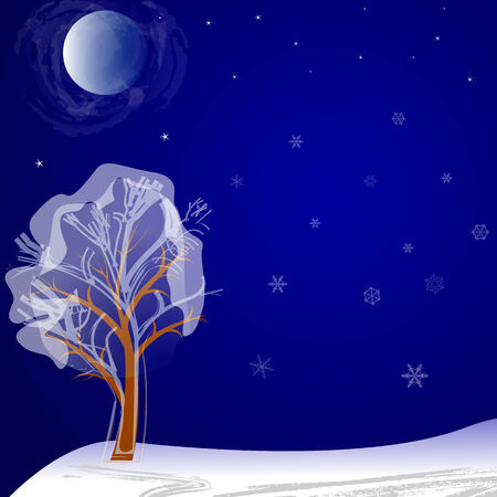 tree in snow at night under the moon