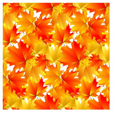 Seamless pattern bright yellow autumn maple leaves Illustration