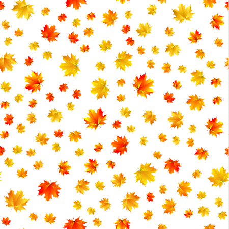 Seamless patern of maple leaves on white background Illustration