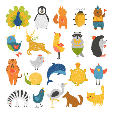 pavo real: Colecci�n linda de los animales, animales del beb�, animales del vector. Vector gato, pavo real, ping�ino, ardilla, escarabajo, oso, p�jaro, ciervos, mapaches, erizo, tigre, delf�n, garza, tortuga, cebra, perro, caracol aisladas sobre fondo blanco. Animales de dibujos animados Vectores