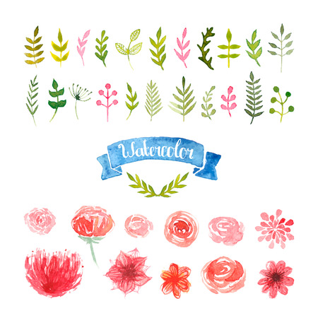 wreaths: Watercolor floral illustration isolated on white