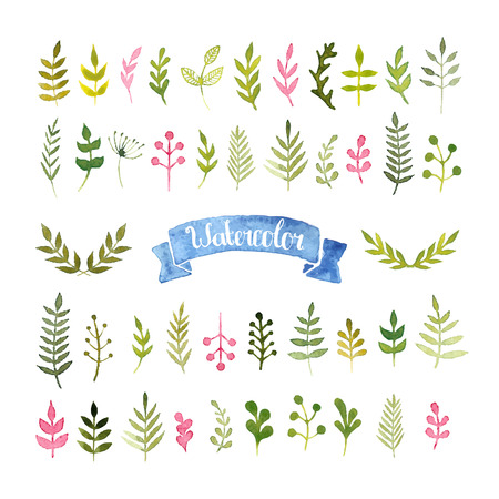 Vector watercolor collection Illustration
