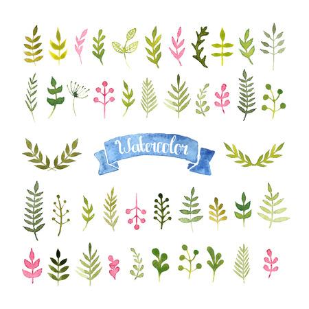 Vector watercolor collection Stock Illustratie