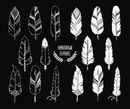 indian ink: Hand drawn set of feathers and silhouette isolated on black background. Ink illustration with different indian feathers isolated on white background