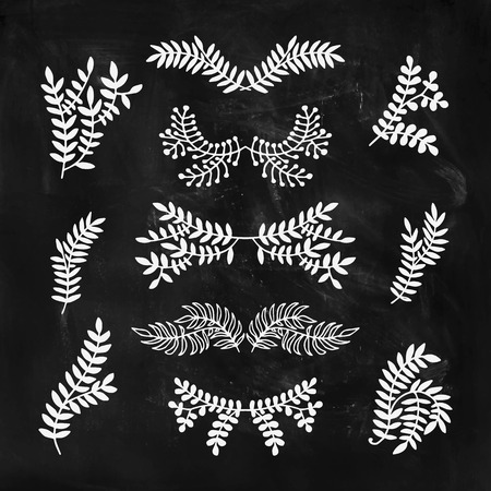 elements of nature: Set of hand drawn laurels, wreath, branches. Nature, floral doodle collection on chalkboard. Decoration elements for design invitation, wedding cards, valentines day, greeting cards