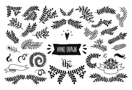 foliage: Set of vector handdrawn set, floral doodle collection. Decoration elements for design invitation, wedding cards, valentines day, greeting cards Illustration
