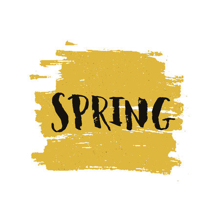 yellow paint: Vector handdrawn lettering Spring on brush stroke with grunge texture. Spring sign on yellow paint stain