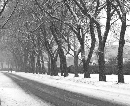 road in winter: Inverno stradale