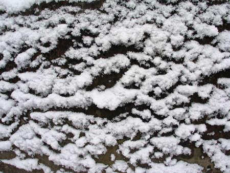 Snow texture Stock Photo - 711817