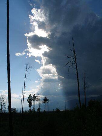 dismal: Thunderstorm