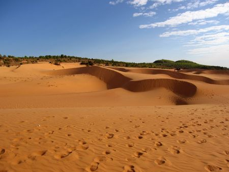 sandhills: Sands of desert