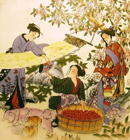 Japanese drawing