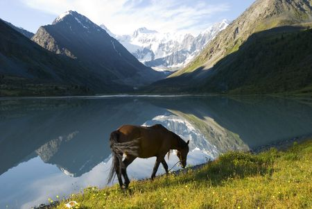 Mountain lake Ak-kem, Altai, Russia photo