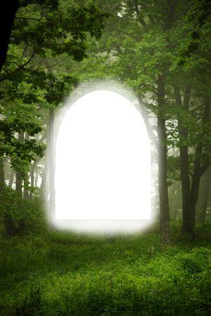 oaken: Forest frame