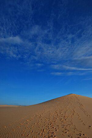 Sand desert, dune Stock Photo - 2870780
