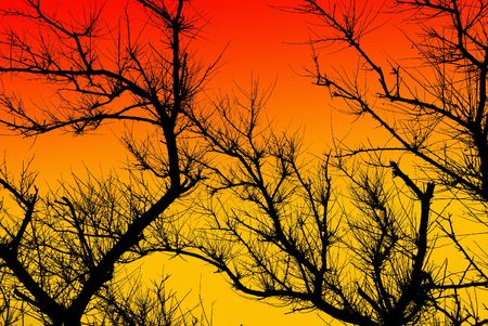Branches and wind, design element Stock Photo - 3330308
