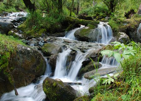 to altai: Waterfall, mountain river, Altai, Russia
