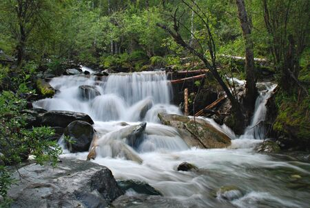 to altai: Waterfall, forest river, Altai, Russia