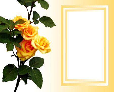 Design for greeting card photo