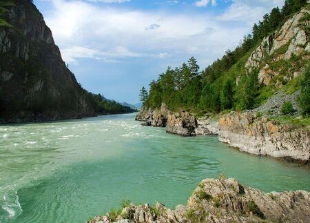 katun: Mountain river Katun, Altai, Russia, wild landscape