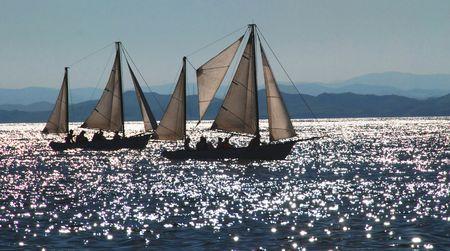 regatta: Sailboats, sail regatta, Vladivostok, Russia Stock Photo