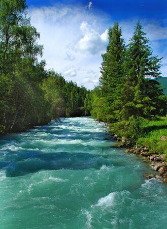 talus: R�o de monta�a Kucherla, bosque, Altai, Rusia