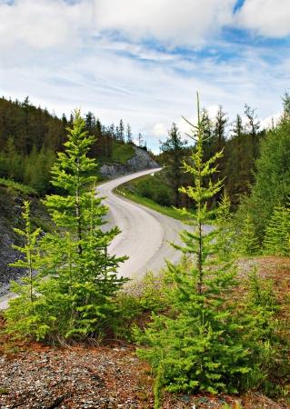 serpentine: Passage, mountain road, Altai, Russia