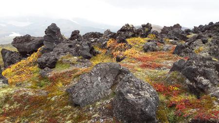 hot temper: Valle de los G�iseres - Kamchatka, Rusia, la tierra de color, rocas