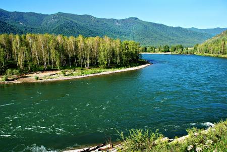 Forest river Kucherla, Altai, Russia, wild landscape Stock Photo