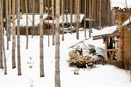 house in the woods in winter, pine, natural texture, winter nature, wooden house