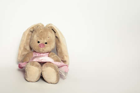 Fluffy, cute little toy rabbit hare in dress on white background with copy space