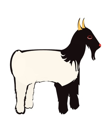 tibetan: Tibetan goat on a white background Illustration