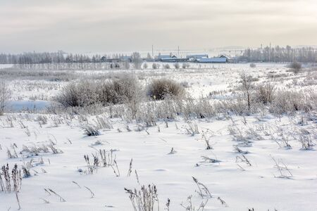 The outskirts of the village on the edge of a snow field in cold winter Imagens