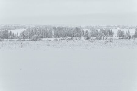 Snow covered field with rarely standing trees in cold winter Imagens