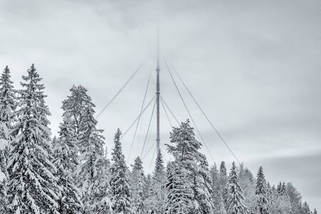 A TV tower peeking out from the snow-covered trees and reaching the top into the fog