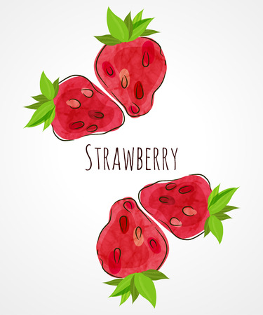 berry on a white background Vector