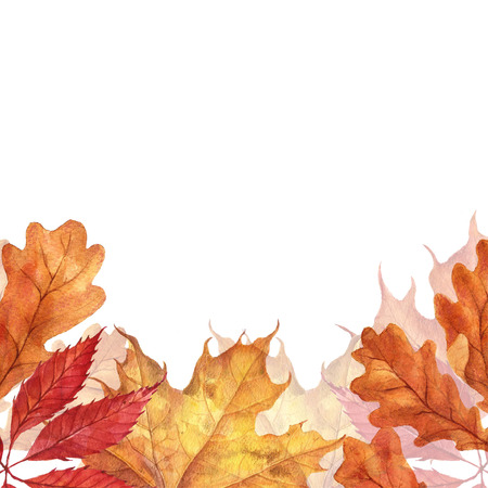 Background with red, orange, brown and yellow falling autumn leaves. Stock Photo - 88422316