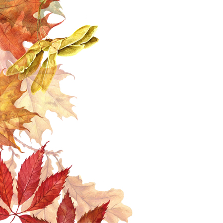 Background with red, orange, brown and yellow falling autumn leaves. Stock Photo - 88422083