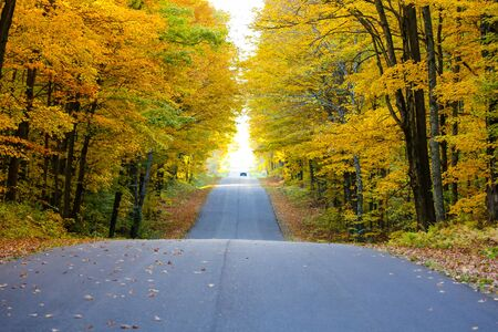 blacktop: Colorful wooded Wisconsin countryside road with a car at the end on a autumn day. Stock Photo