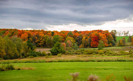 Wisconsin farmland and colorful forrest in October, horizontal