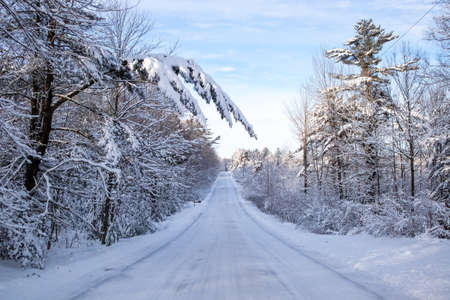 Snow covered road and forest in central Wisconsin in January, horizontal