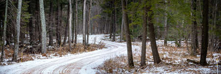 Winter gravel road through a Wausau, Wisconsin forest in January, horizontal