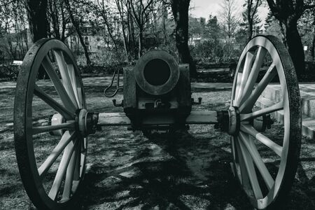 black and white photo, an ancient cannon that shoots nuclei stands muzzle forward in spring