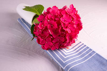 against a light background, a branch of pink hydrangea lies on a blue napkin and it all lies on a structured table